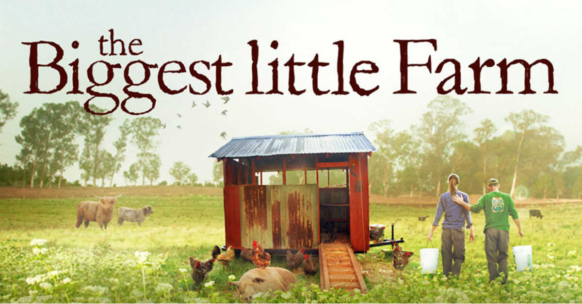 The Struggle (to Live Sustainably) is Real, in 'The Biggest Little Farm'