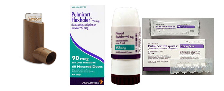 Pulmicort / budesonide medications